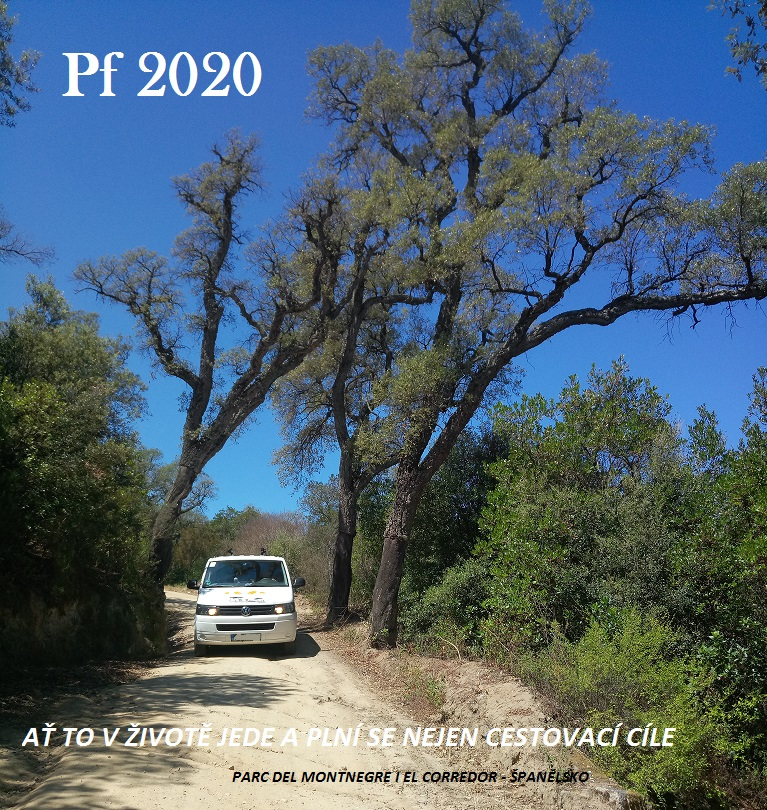 pf2020.jpg