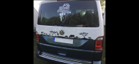 Avatar uživatele silvervan